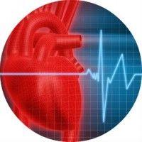 Брадикардія серця - що це таке, симптоми і лікування