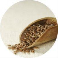 Чим корисно льняне насіння для здоров`я, протипоказання до нього