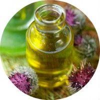 Кращі маски з реп`яхову олію для догляду і лікування волосся в домашніх умовах