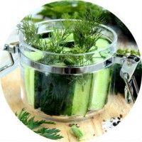 Рецепти, як зробити малосольні огірки швидкого приготування