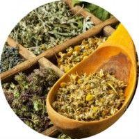Трави для лікування нирок в народній медицині